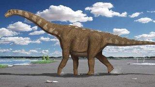 Argentina: hallan el titanosaurio más antiguo del mundo