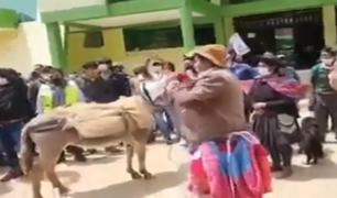 Huancavelica: obligan a alcalde a pasear en burro vestido de mujer por incumplir promesas