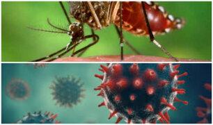 Dengue y COVID-19: aprenda a distinguir los síntomas