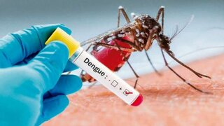Dengue: Minsa emite alerta epidemiológica en 14 distritos de Lima