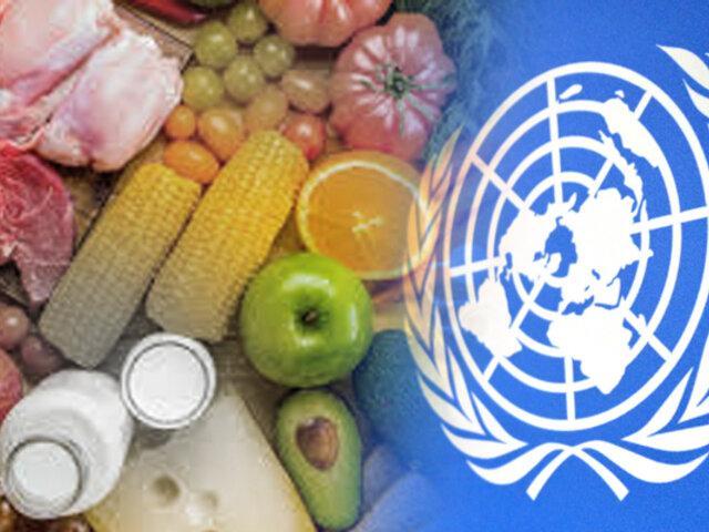 ONU alerta de que se desperdicia el 17% de todos los alimentos en el mundo