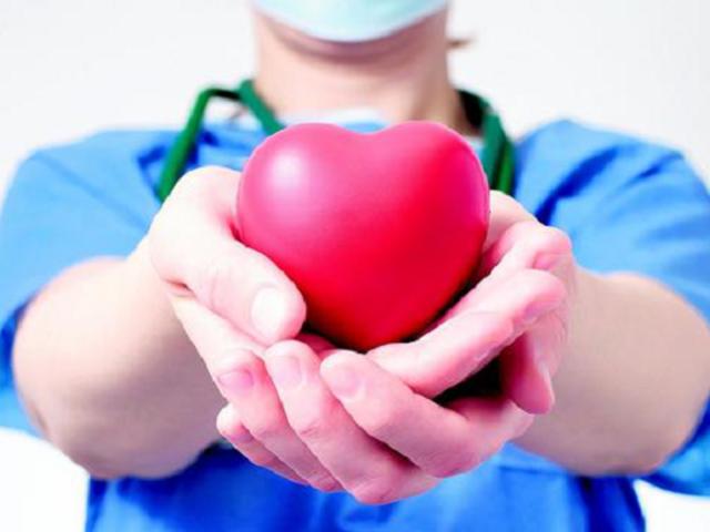 Comisión de Salud aprueba dictamen que regula donación y trasplante de órganos