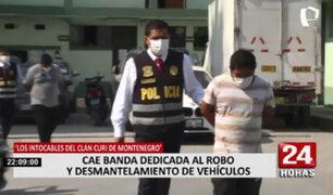 'Los Intocables del clan Curi de Montenegro': capturan a banda dedicada al robo vehicular