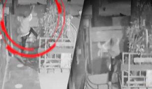 Callao: delincuente cayó de segundo piso cuando intentaba robar vivienda