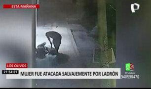 Adulta mayor acabó malherida por sujeto que la atacó a golpes en Los Olivos