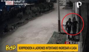 Ate: pareja de ladrones son sorprendidos intentando ingresar a una casa
