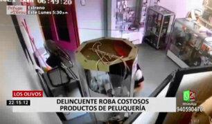 Los Olivos: comerciantes de la Av. Antúnez de Mayolo denuncian constantes actos delictivos