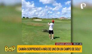 EEUU: enorme caimán irrumpe en medio de un partido de golf