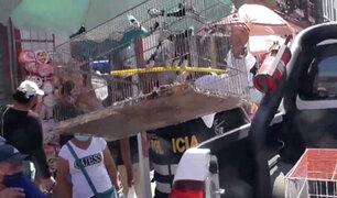 [VIDEO] Mesa Redonda: rescatan más de 100 animales que iban a ser vendidos ilegalmente