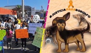Cientos de mexicanos marchan exigiendo  justicia por perrito asesinado a machetazos