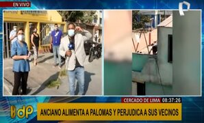 Cercado de Lima: anciano alimenta a palomas y perjudica a vecinos