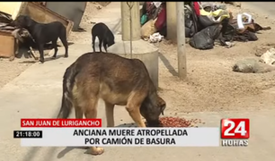 Vecinos adoptan a perritos de anciana que murió atropellada por camión recolector en SJL