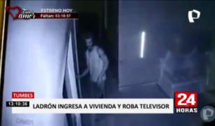 Tumbes: cámaras captan a ladrón robando televisor en una casa