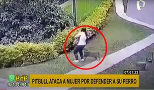 ¡Violento ataque! 'pitbull' agrede a joven que paseaba a su mascota