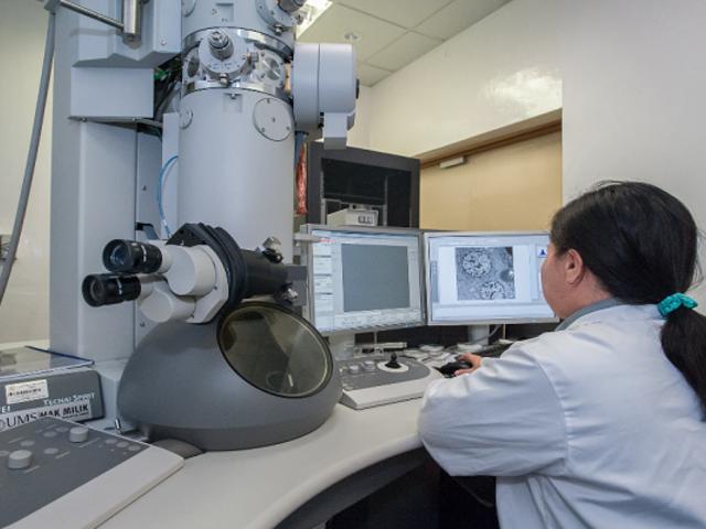 Concytec financiará pasantías a comunidades académicas y científicas de Perú y Francia