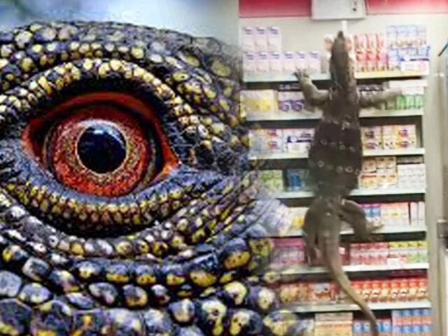 Tailandia: lagarto gigante se cuela en un supermercado y siembra caos entre clientes