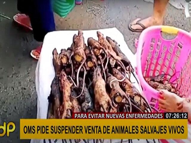 OMS recomendó evitar la venta de animales salvajes vivos en mercados por prevención