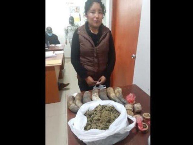 Cusco: detienen a mujer que trató de ingresar droga camuflada en cuernos a penal