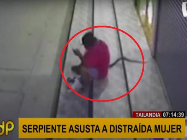 El aterrador momento en que una serpiente se deslizó por piernas de distraída mujer
