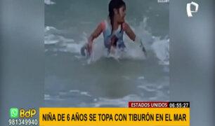 ¡Terrible susto! Niña de seis años se topó con tiburón en una playa