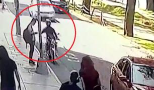 Avenida Arequipa: joven fue víctima de la delincuencia mientras esperaba el bus