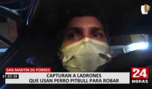 PNP capturó a delincuentes que usaban pitbull para robar en SMP