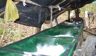 Bolivia: descubren en la selva megalaboratorio que producía unos 200 kilos diarios de cocaína