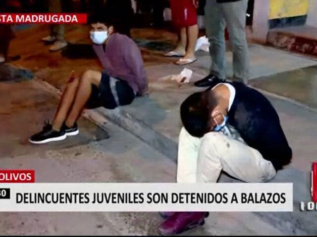 Menores de edad participaron de robo a pollería en Los Olivos