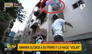 Maltrato animal: 'youtuber' amarra a su perro con globos y lo hace volar