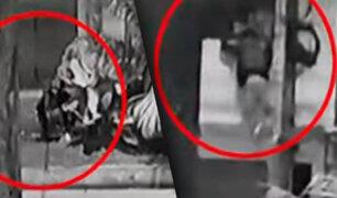 Ladrón trepa poste e ingresa a robar en una vivienda