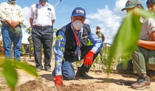 Madre de Dios: recuperan bosques de reserva natural que fueron dañadas por la minería ilegal