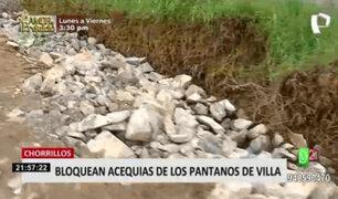 Acequias de Pantanos de Villa en peligro: MML  viene tomando acciones para su cuidado