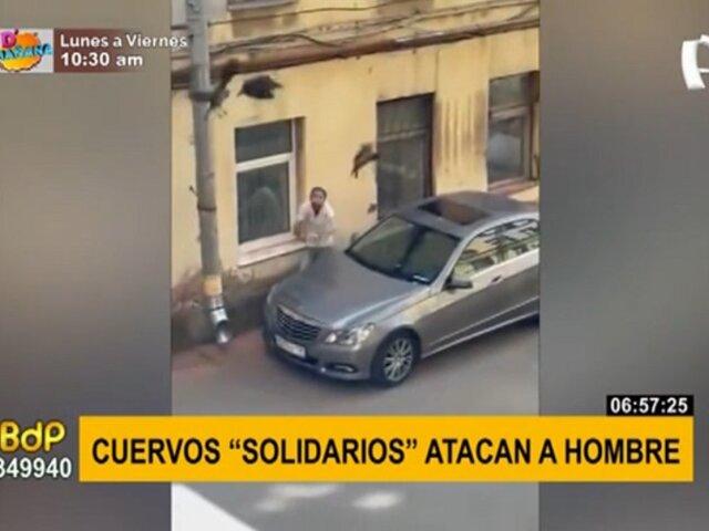 Hombre es atacado por cuervos tras retirar a una de las aves de su carro