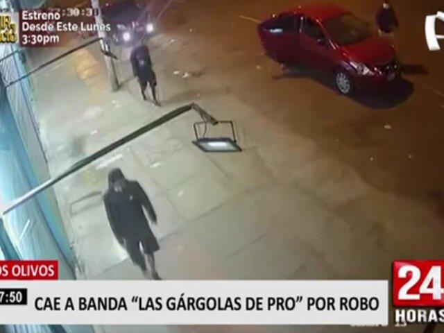 """Los Olivos: cae banda """"Las Gárgolas de Pro"""" por robo"""