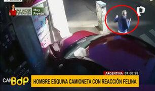 Argentina: reacción 'felina' salva a un hombre de ser aplastado por un auto