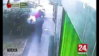 SMP: Dos sujetos roban cachorra raza pitbull