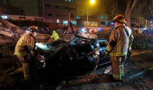 Surco: seis personas resultaron heridas luego de que árbol cayera sobre dos autos