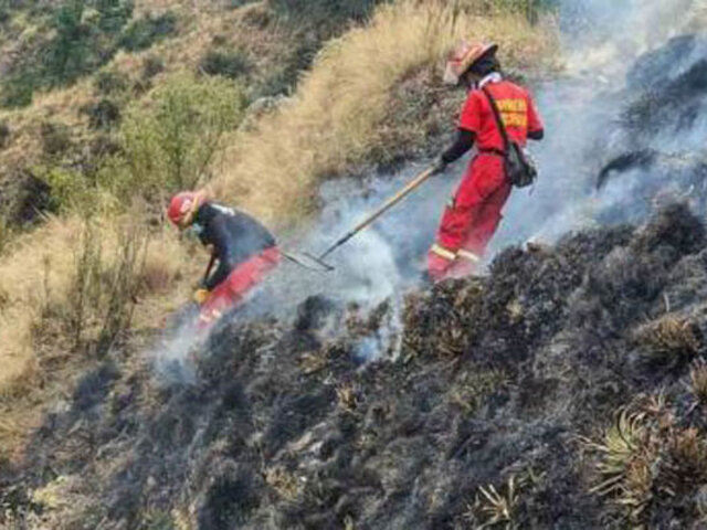Tras intensas labores controlan incendio forestal que arrasó bosques y pastizales en el  Cusco