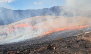 Cusco: incendio forestal golpea a la provincia de Quispicanchi