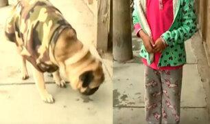 Delincuencia en Chorrillos: sujetos golpean a niña de siete  años para arrebatarle su mascota