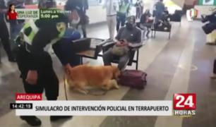 Arequipa: realizan simulacro de intervención policial en terrapuerto
