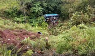 San Martín: bus se despistó y cayó a abismo en carretera Fernando Belaúnde