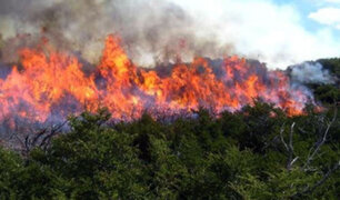 Midagri: representantes de 18 regiones coordinan estrategias para prevenir  incendios forestales