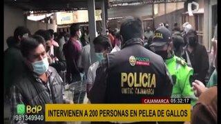 Cajamarca: intervienen a 200 personas mientras realizaban peleas de gallos