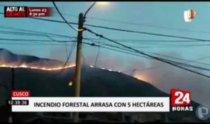 Cusco: Al menos cinco hectáreas arrasadas por incendio forestal