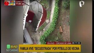 """Cercado de Lima: familia vive """"secuestrada"""" por pitbulls de vecina"""
