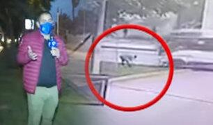 Cúster atropella a trabajadora municipal en La Molina