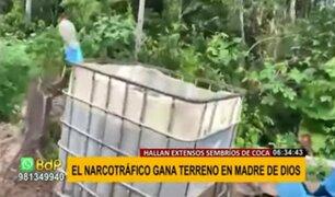 Sembríos ilegales de coca y narcoavionetas invaden Madre de Dios