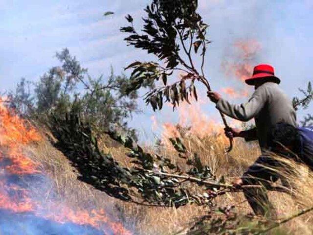 Bosques arrasados, alpacas muertas y varias casas destruidas deja incendio forestal en Puno
