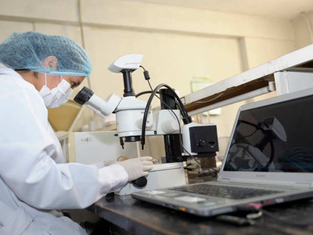 Prociencia convoca a concurso para formación de investigadores postdoctorales